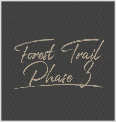 Forest Trail Phase 3